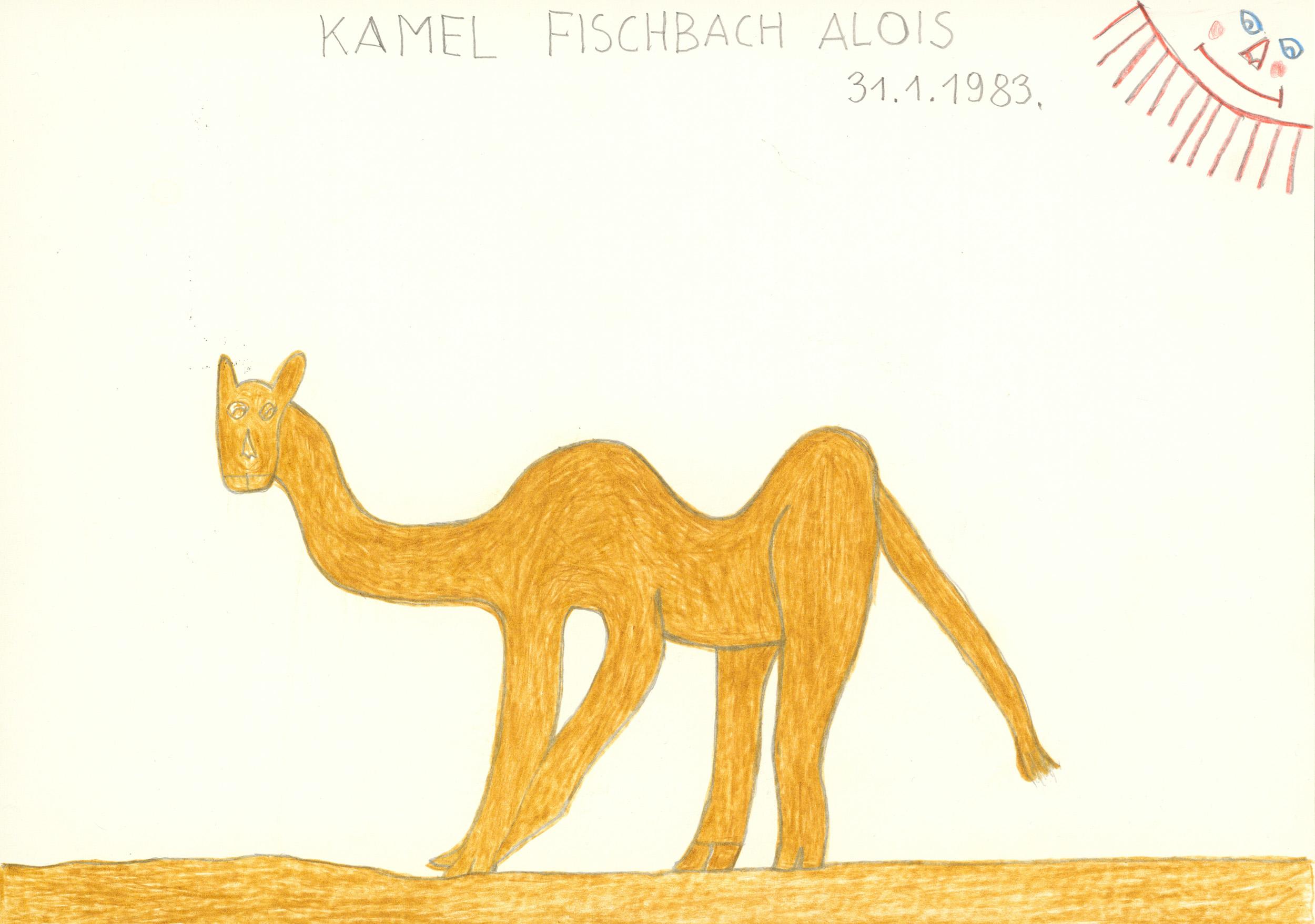 fischbach alois - kamel / camel