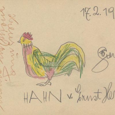 Hahn / Cock