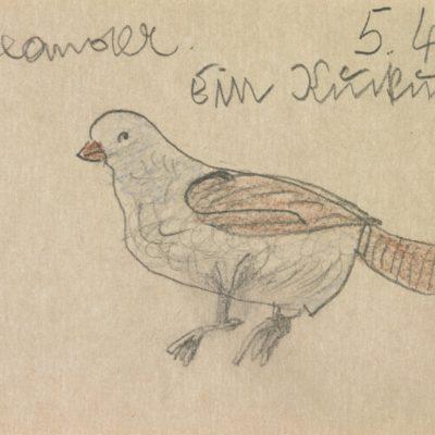 Ein Vogel / A bird