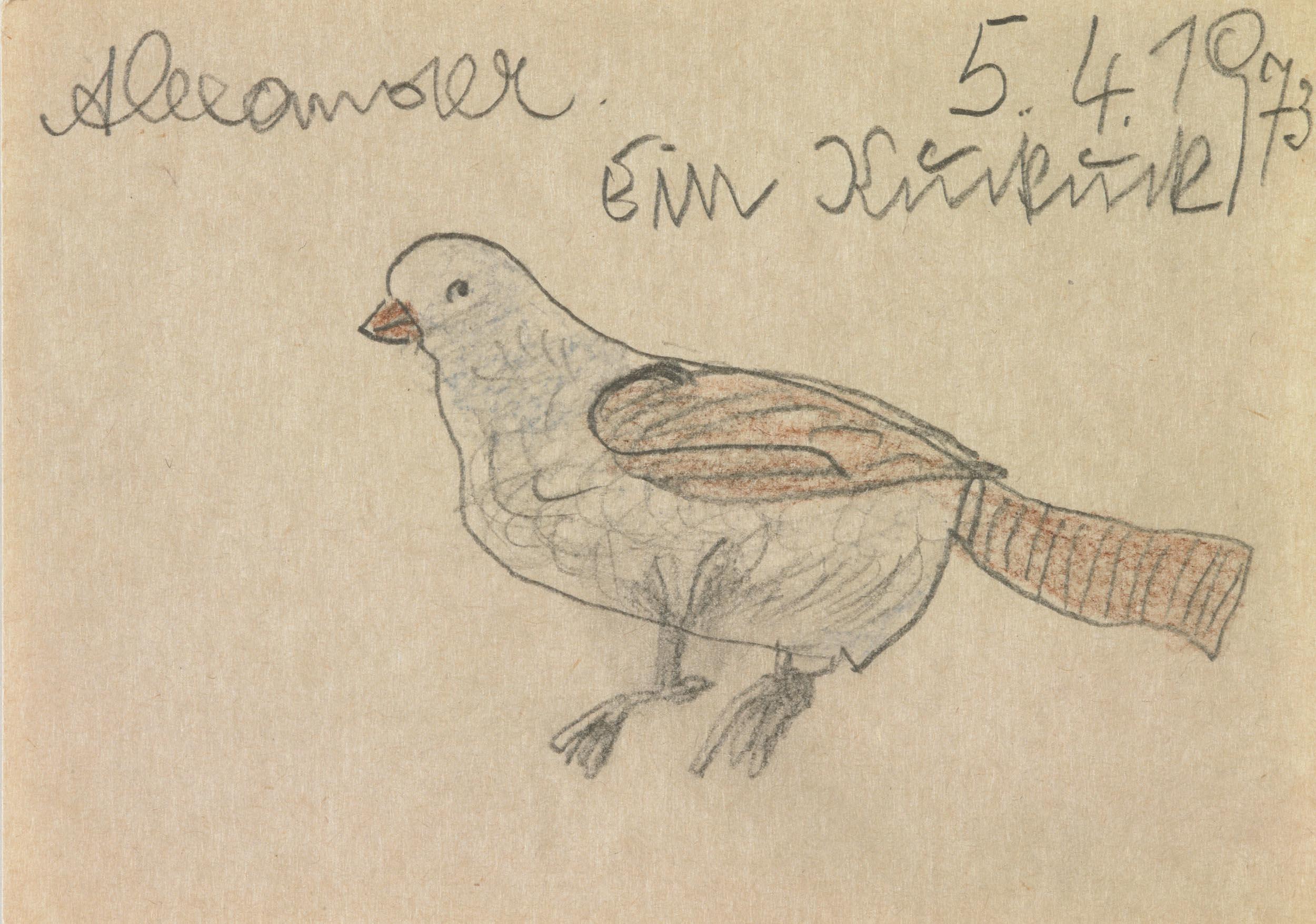 herbeck ernst - Ein Vogel / A bird