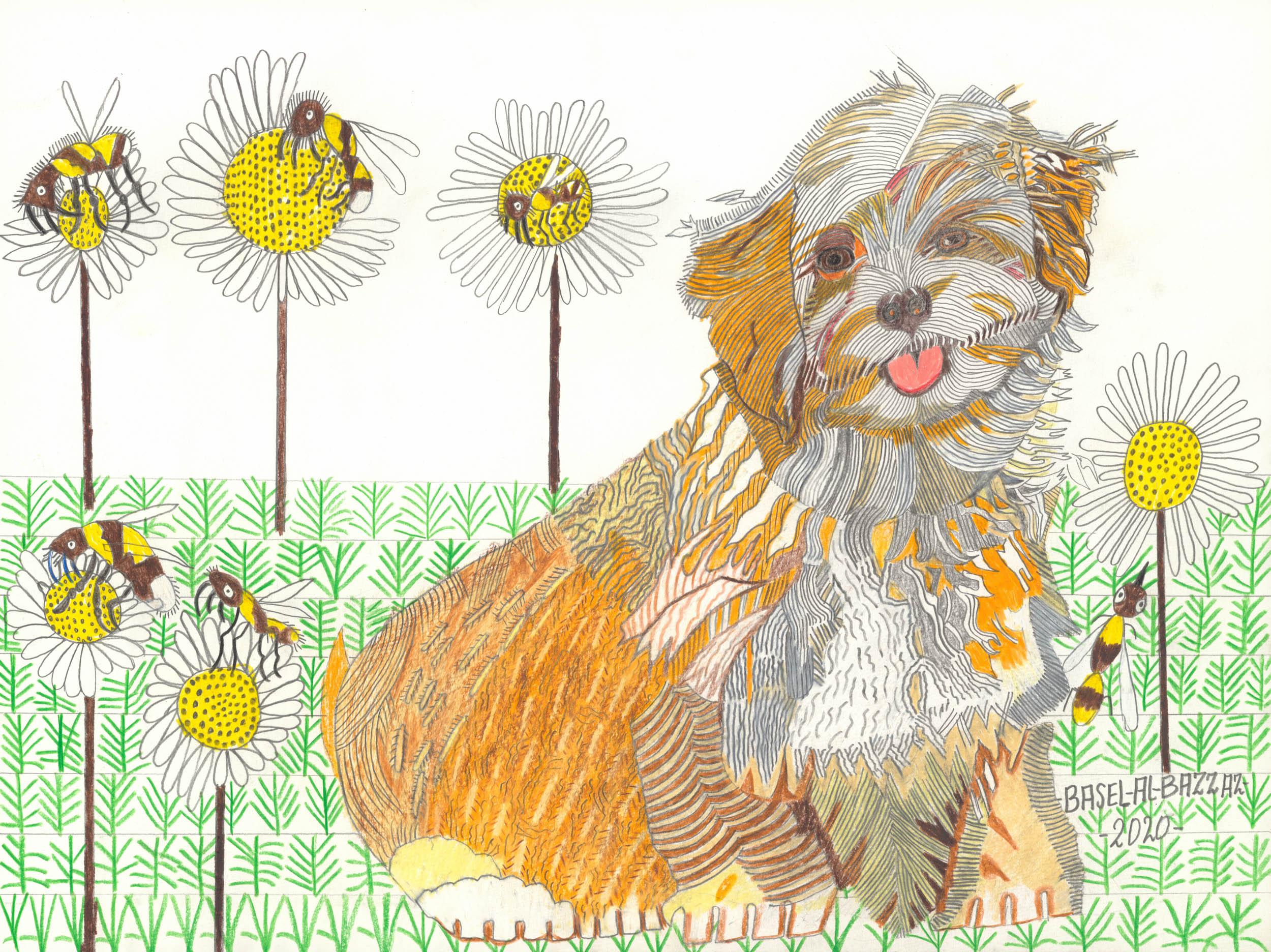 al-bazzaz basel - Hund in der Frühlingswiese / Dog in the spring meadow