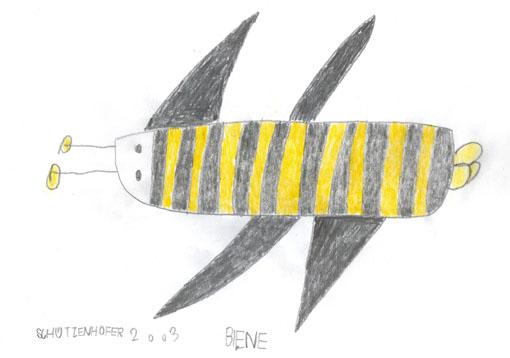 schützenhöfer günther - Biene / Bee