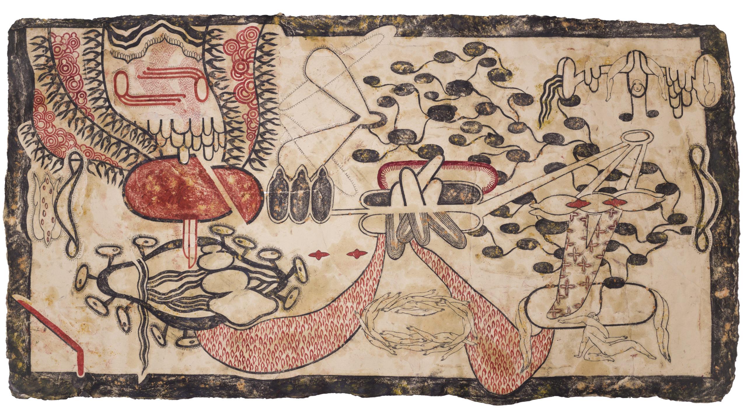 pellegrini simone - Bordo della cortina estrema