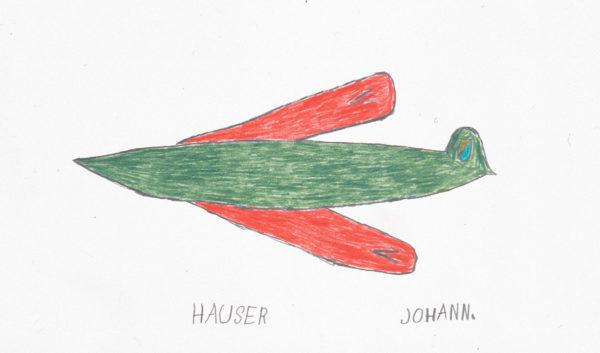 Flugzeug / Aeroplane - hauser johann