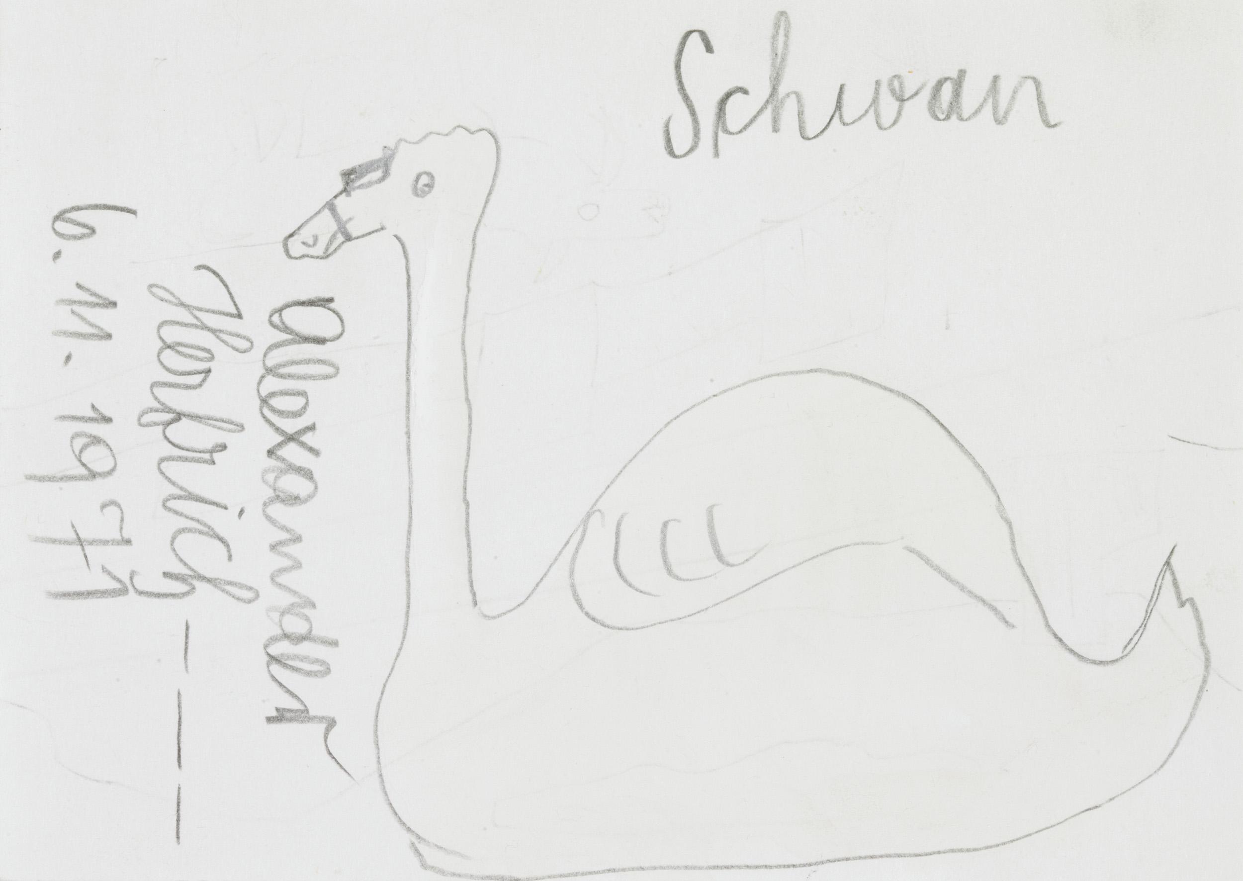 herbeck ernst - Schwan / swan