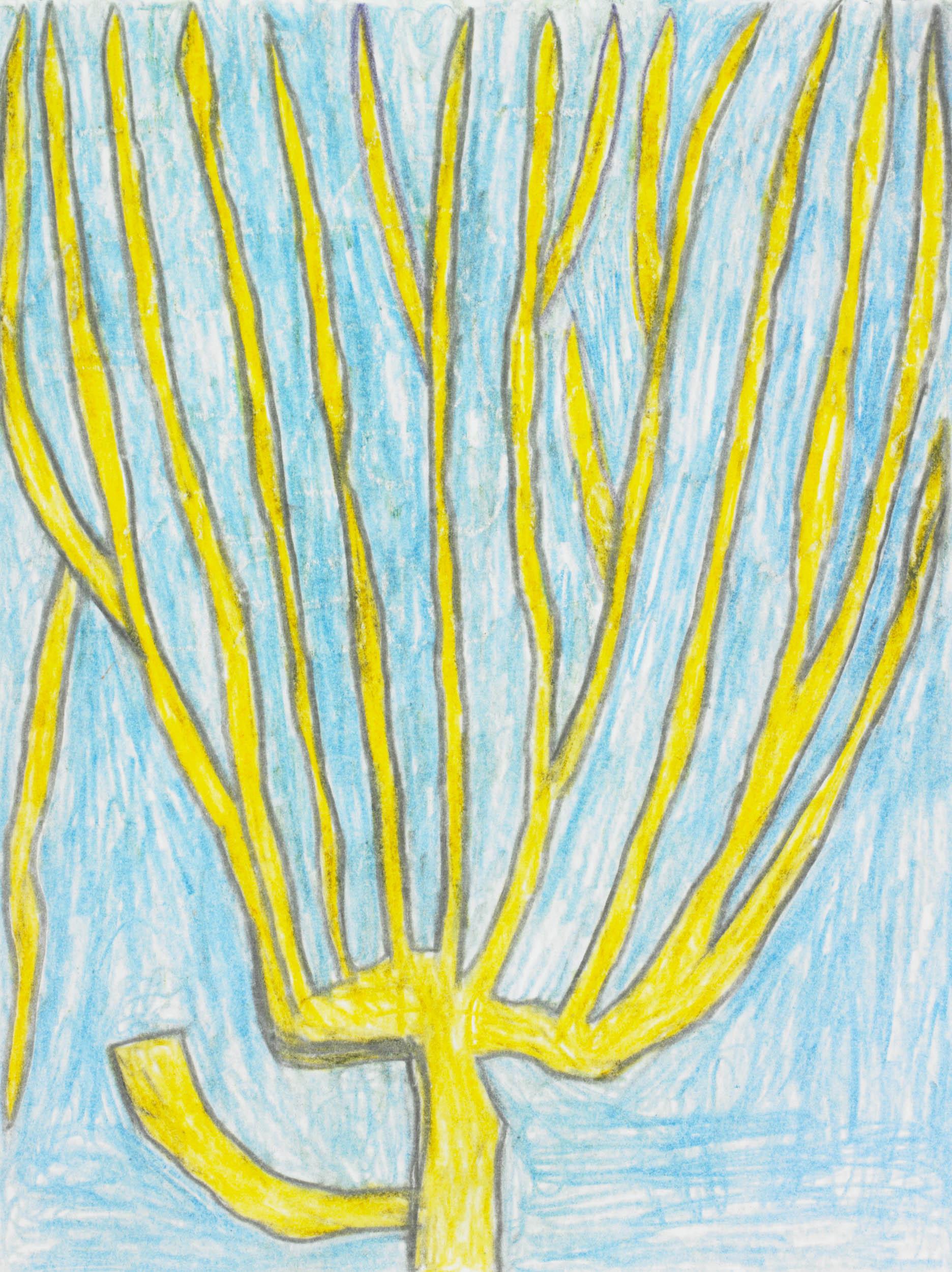 walla august - BAUM MIT UMGEHACKTEN AST/ TREE WITH CHOPPED BRANCH
