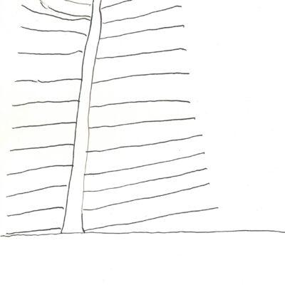 Ein Baum / A tree