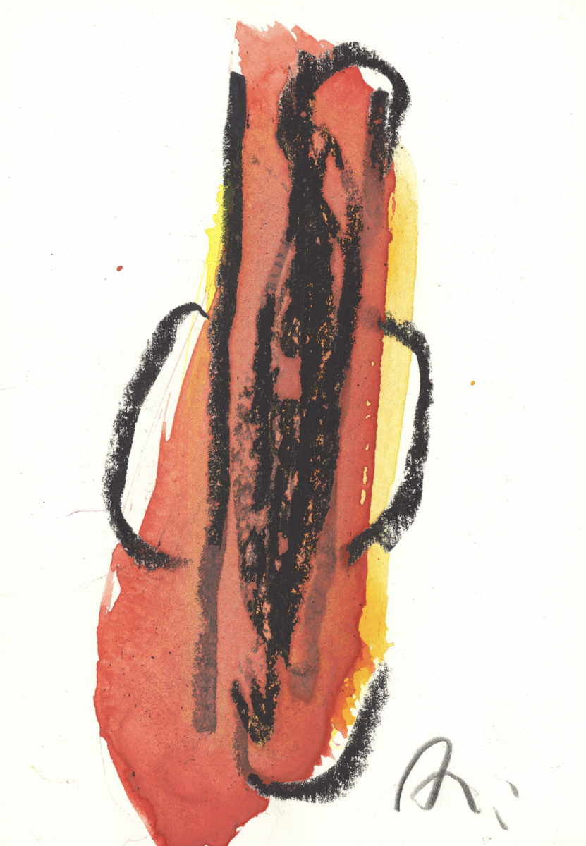 schmidt arnold