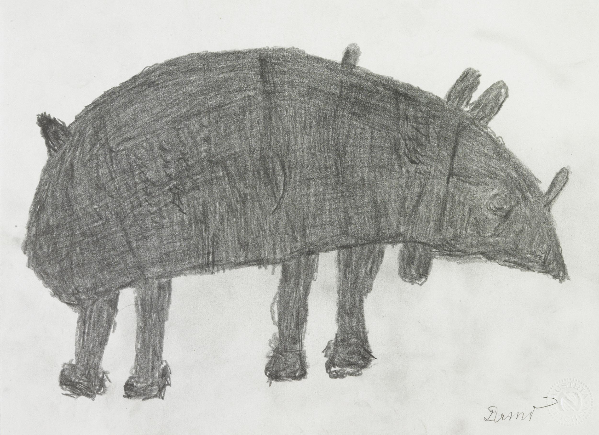 dobay anton - Nashorn / Rhino