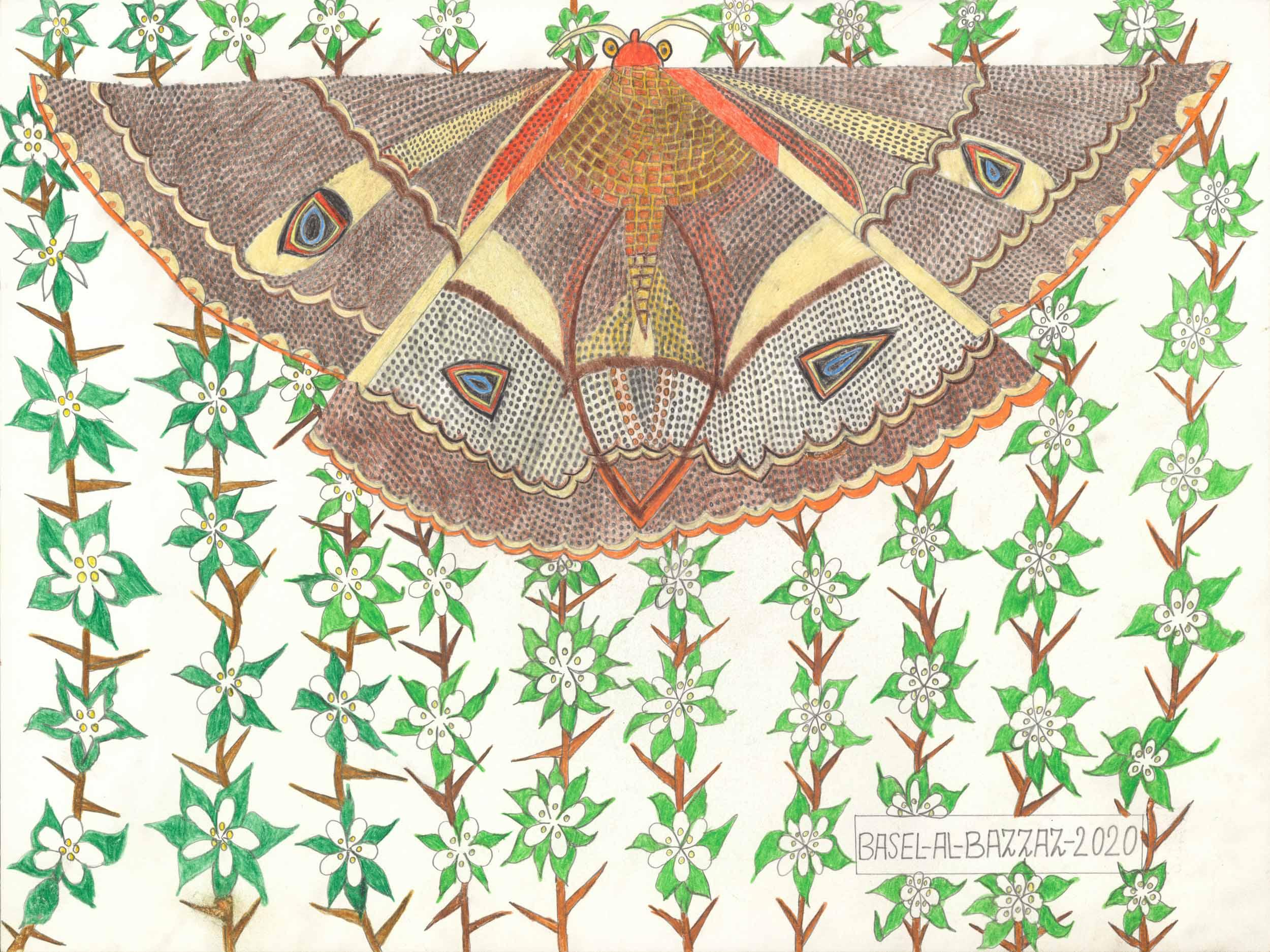 al-bazzaz basel - Flügelspanner / Wingspread