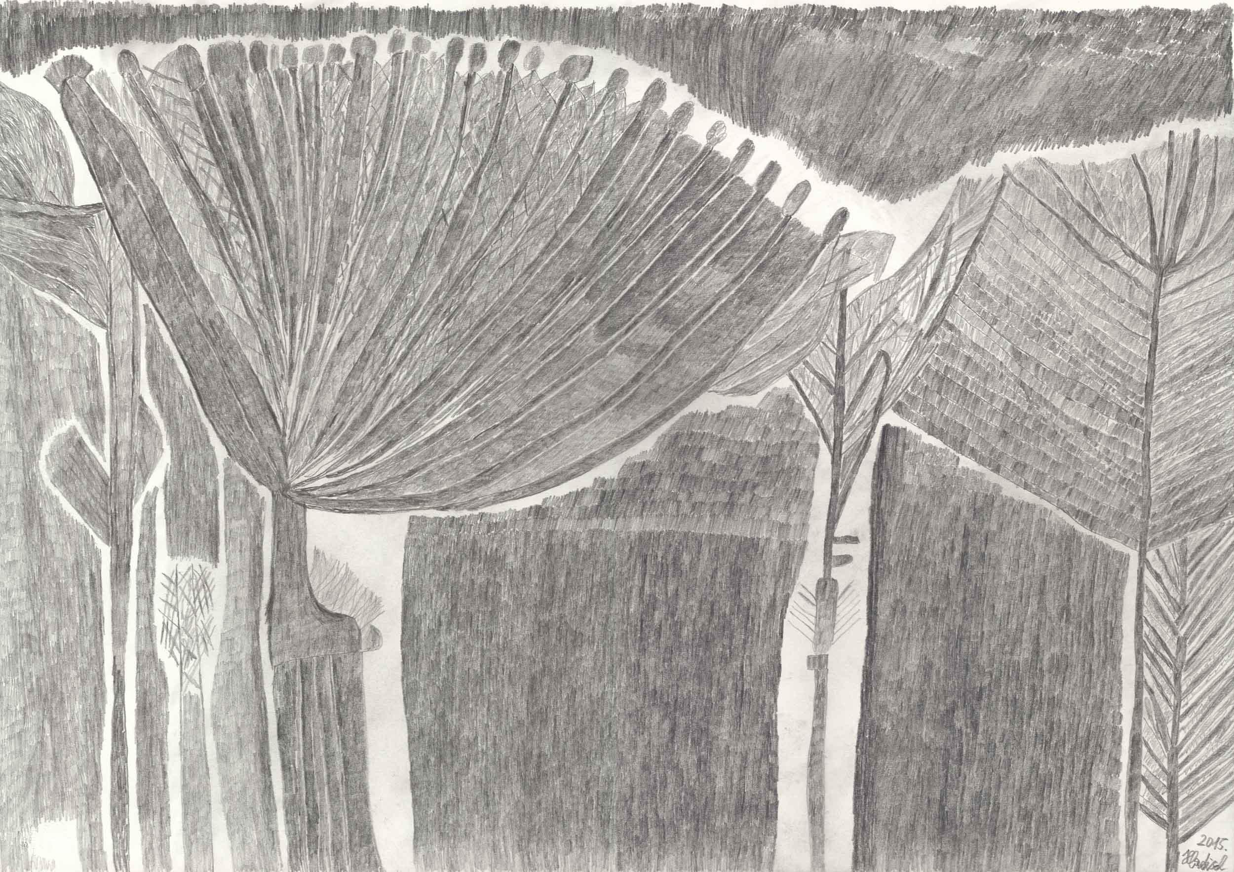 hladisch helmut - Bäume / Trees