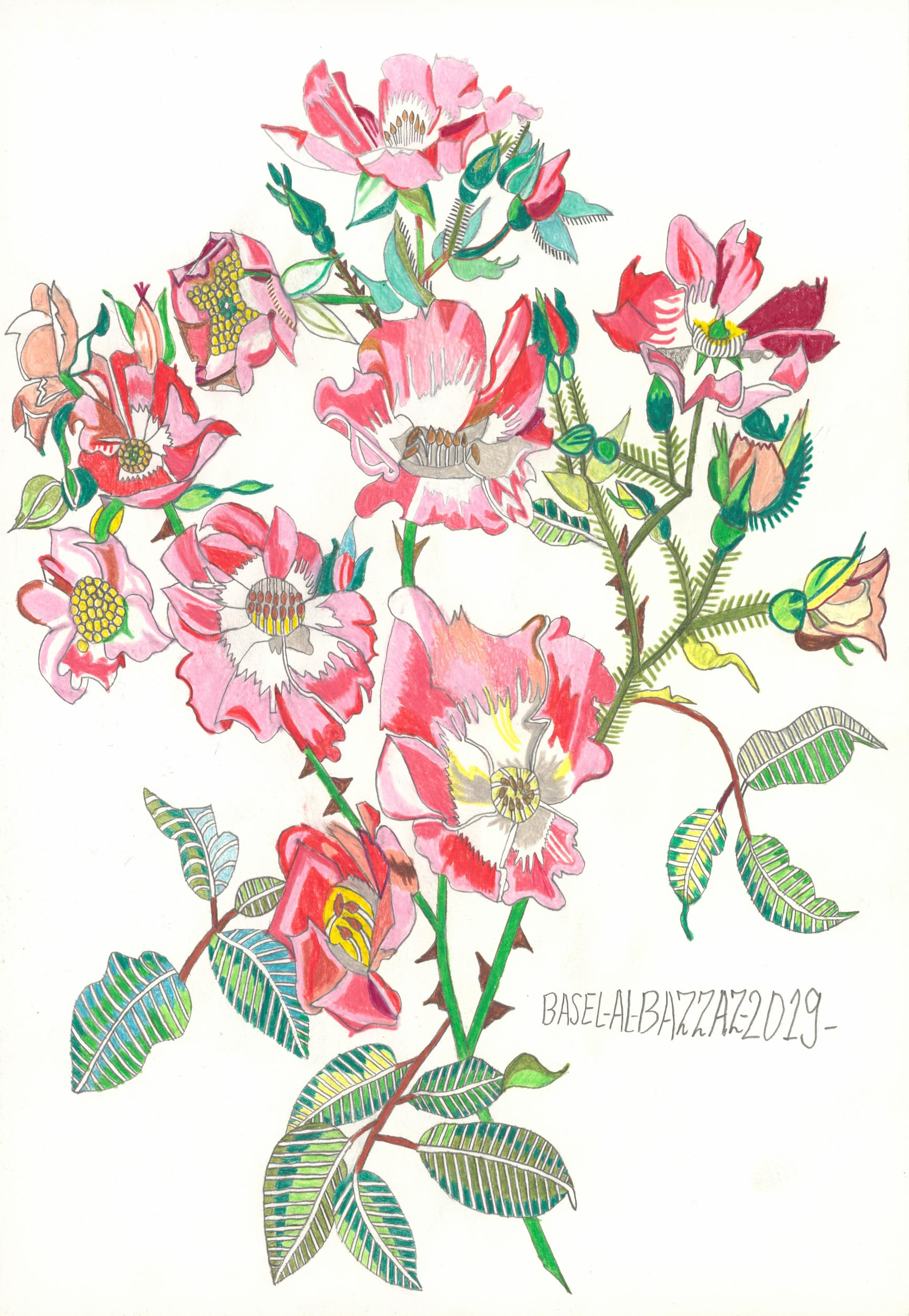 al-bazzaz basel - Heckenrose / Dog rose