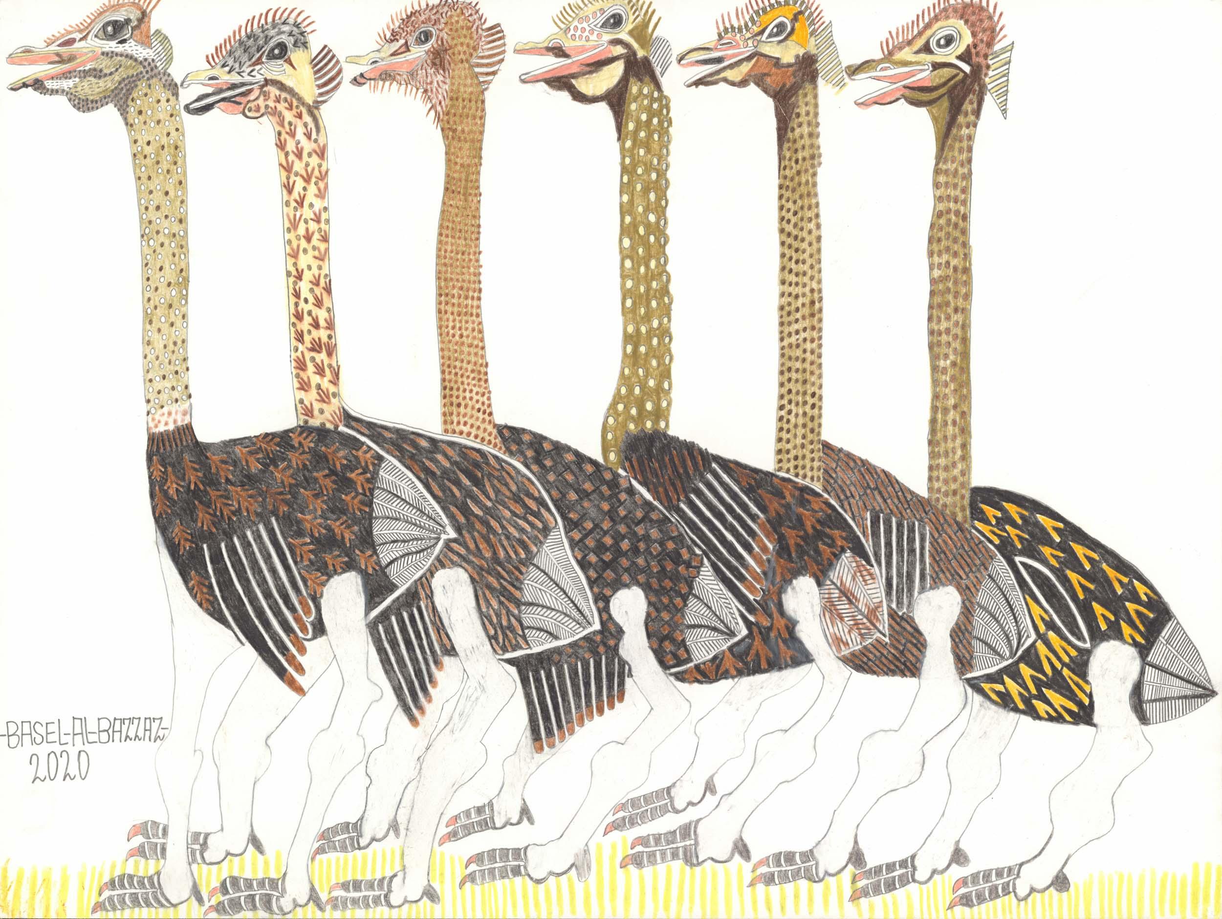 al-bazzaz basel - Vogel Sträuße / Ostriches