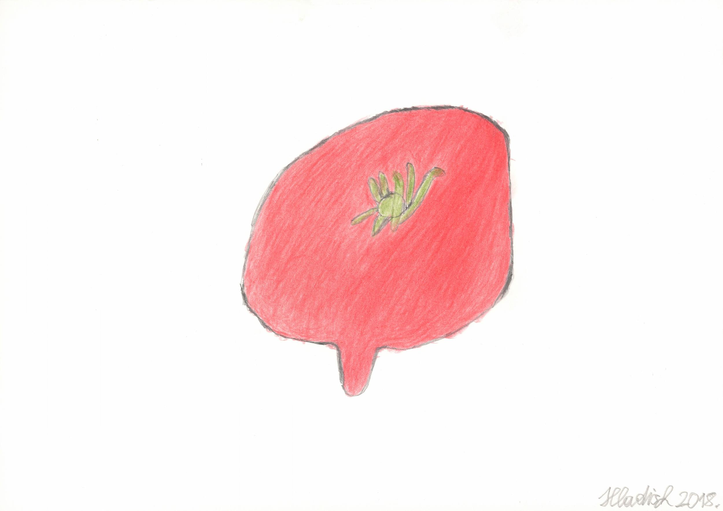hladisch helmut - Tomate / Tomato