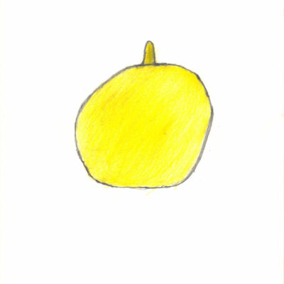 Zitrone / Lemon