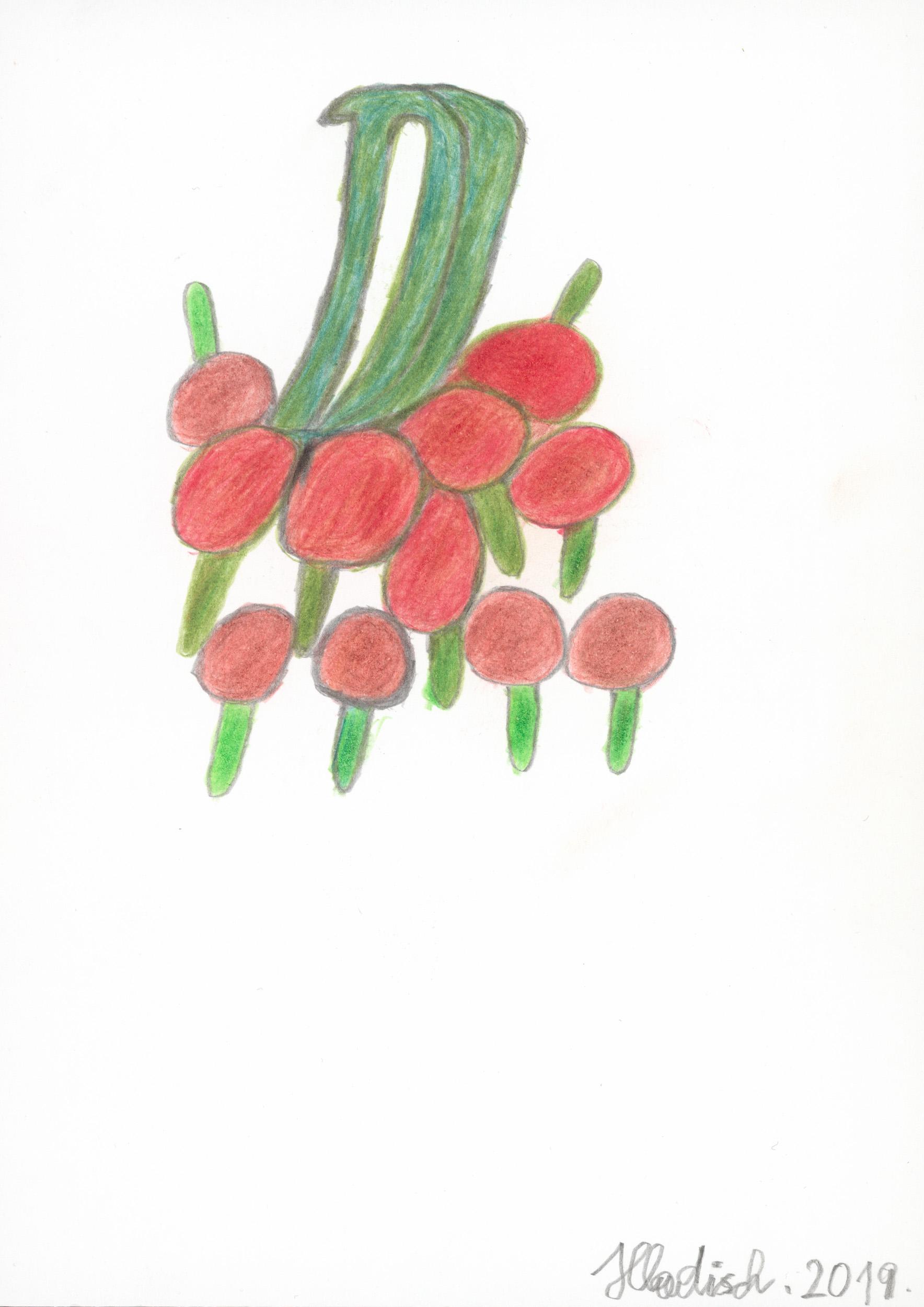 hladisch helmut - Rispentomaten / Tomatoes on the vine