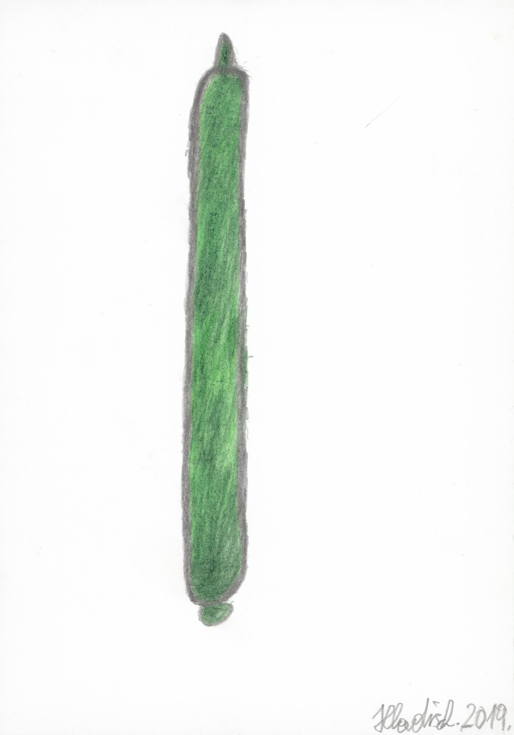 hladisch helmut - Gurke / Cucumber