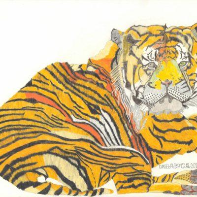 Großer Tiger/ Big tiger