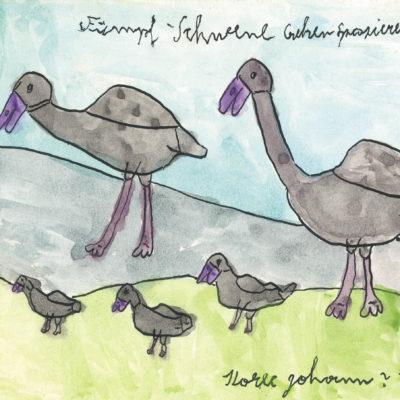 Fünpf-Schwene gehen spazieren? / Five swans go for a walk?