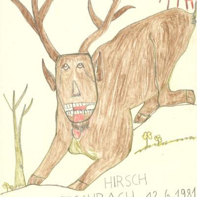 Hirsch / Deer