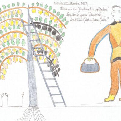 Das Kirschenpflücken / Picking the cherries