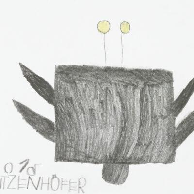 schmetterling/butterfly